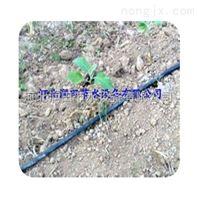 满城种植用什么浇地大棚用滴灌带滴灌管
