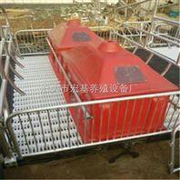 湖南养猪设备双体高培母猪产床老母猪产栏