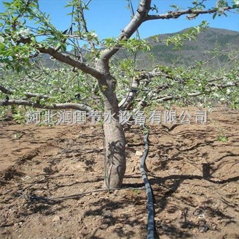 开封实惠物美果树滴灌设备 河南小管出流准确灌溉