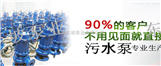 山东潜水排污泵-天津东坡潜水污水排污泵生产销售