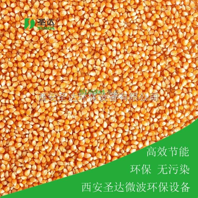 玉米微波干燥设备