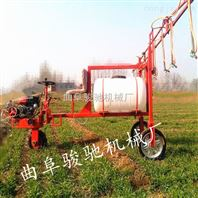 柴油汽油三轮打药机 容量高喷喷药机 小麦三轮打药机