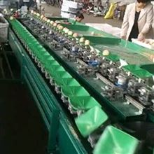XGJ-MHT江西南昌猕猴桃分选大小 重量分选机