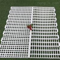 养殖塑料漏粪板