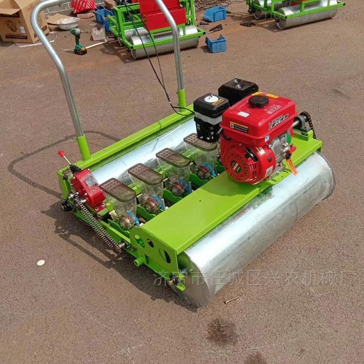 汽油手推蔬菜白菜播种机