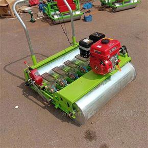 xnjx-6汽油手推蔬菜白菜播种机