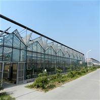 玻璃大棚 智能玻璃温室 现代化大棚