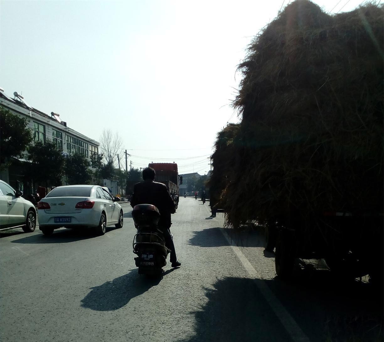 路面大草垛移动原来是拖拉机超载运输