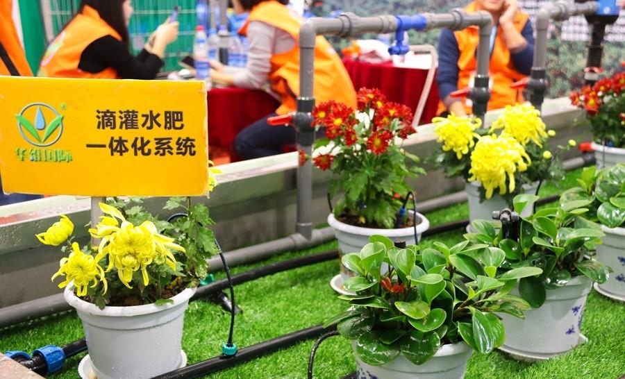 第23届杨凌农高会:学生记者眼中的农业高科技