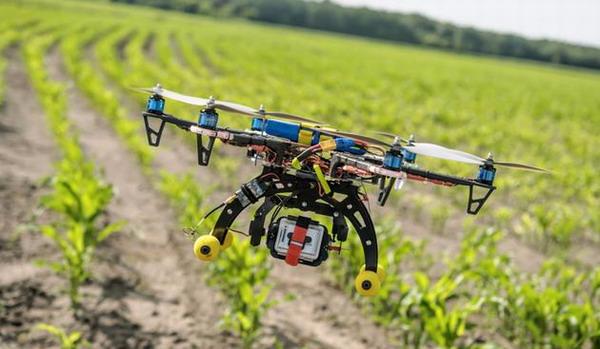 舟山定海:无人机开始进入农业监管领域