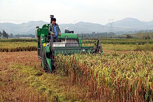 """南京农机化研究所科技创新工程为""""三农""""发展提供科技与装备支撑"""