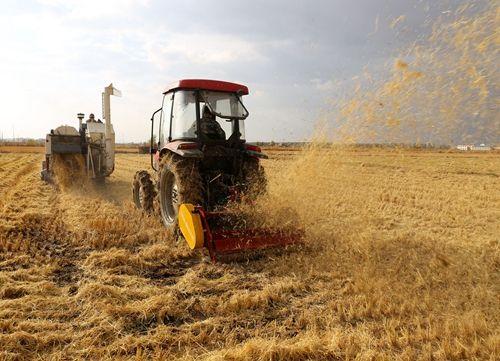 农业机械化:缩小城乡差异  推进城镇化发展