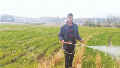 陈孝清:科技农业践行者