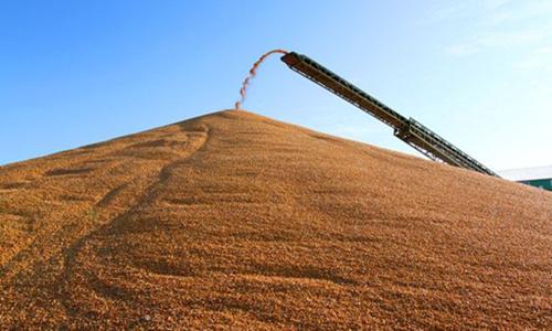 """农民的""""补贴""""不是干部的""""肥水"""""""