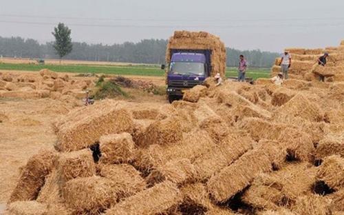 分析:秸秆肥料化的现状、问题和发展前景