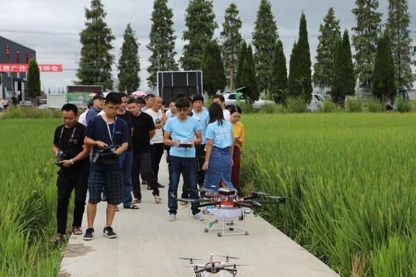 """台州:推广农用植保无人机 加快农业""""机器换人""""步伐"""