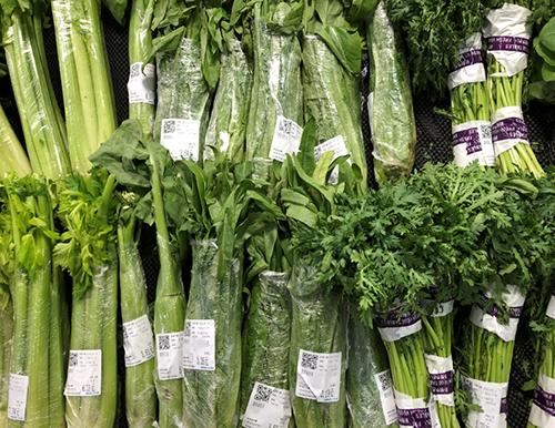 上海市嘉定区开展新型蔬菜收获机试验