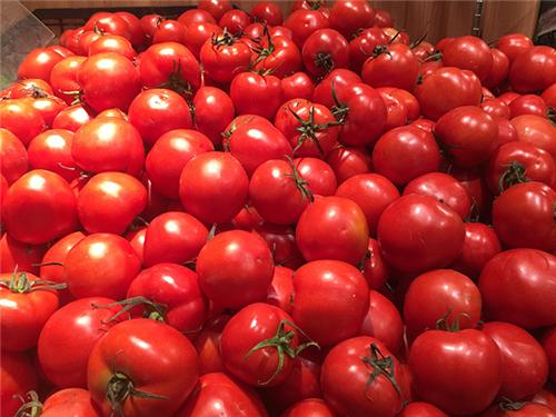 寧波市關于蔬菜生產機械購置臨時補貼情況公示