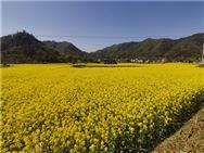 吉林延邊州農機部門到汪清督導農機備春耕生產