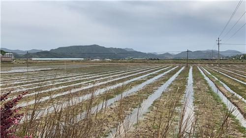 陜西省陜北地區完成年度深松整地任務過七成
