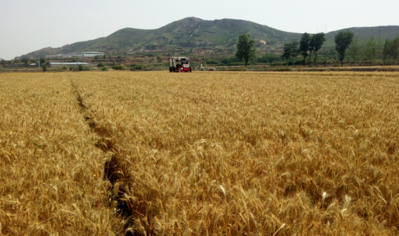 陕西省农机化发展中心深入基层宣传农机购置补贴政策