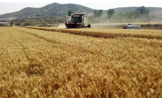 黑龙江关于对全省农机制造(经销)企业发展情况进行摸底调查的通知
