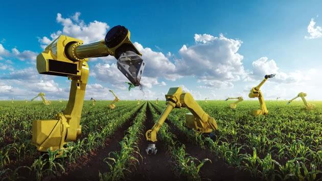 装备 采蘑菇的机器人