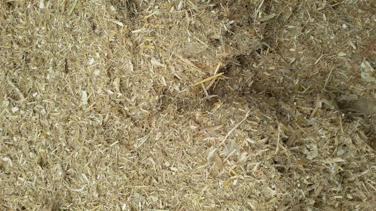 注:以上连续均匀喂入条件下 工作原理 工作时,被加工的饲草在进草压辊的直接作用下直线进入切草刀辊转动机构进行切碎,利用切草辊再高速旋转运行中产生的离心风力将碎草抛送出机壳3-5米处远。 主要部件 包括机体、机架、进草压辊、刀架总成、定刀片、动刀片、防护装置等组成。 安全注意事项 1、使用机器前,必须仔细阅读产品说明书,并按规定进行调整和保养。 2、开机前须检查各关键部件是否紧固,刀轮转向是否与规定的方向一致,上机壳是否紧锁,安全防护罩是否安装到位。 3、机器运行时严禁开启安全防护罩。 4、发现异常情况必须