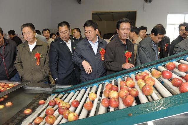苹果清洗打蜡机