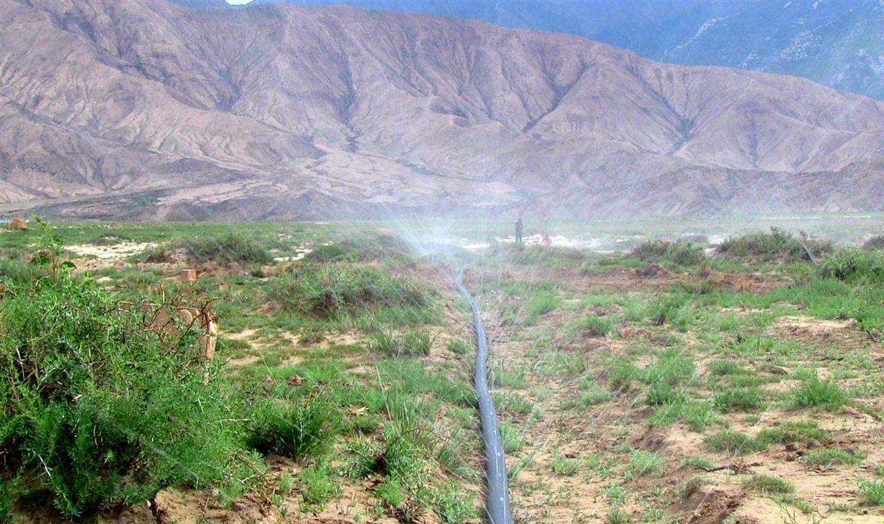 新疆草原地广人稀,大面积架设电网用于草场灌溉从经济性与可行性上皆