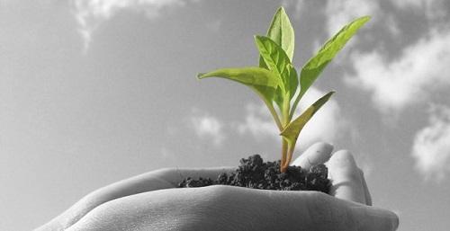 用大数据构建当代智慧农业发展